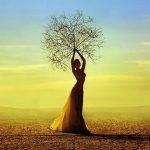 Donna come albero nel deserto, impara sbagliando